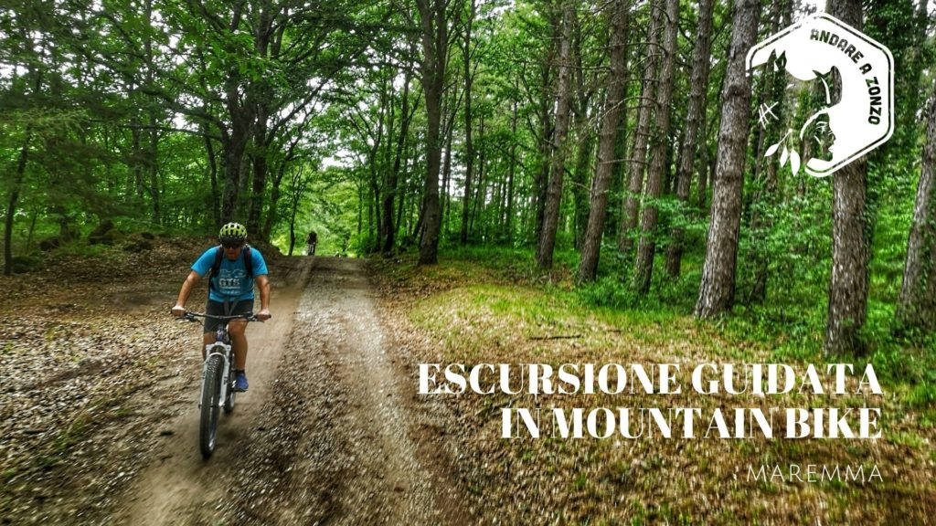 Escursioni Guidate Mountain Bike in Maremma